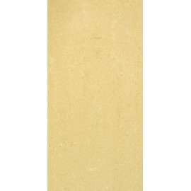 Barberini polished 30x60