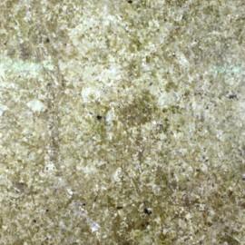 Verde Portofino Granite 30.5x30.5cm