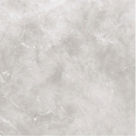 Insignia Grey Polished 80x80